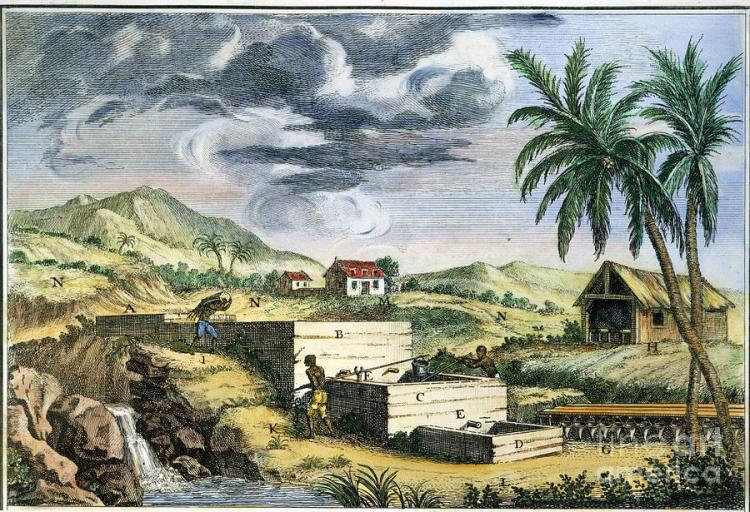 indigo-plantation-granger[1]